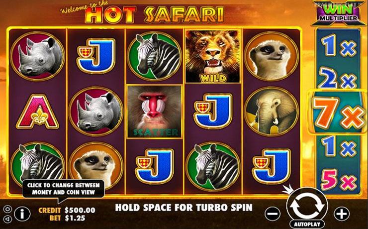Hot Safari Screenshot #1